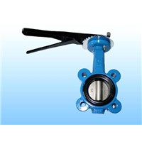 lug type butterfly valves