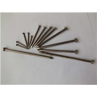 nail, wire nail ,common nail ,wood nail,iron nail