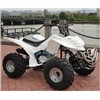 The large dinosaur 200CC ATV motorcycle four-wheel off-road vehicles off-road ATV SLM-13