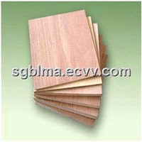 1220*2440mm MR 3 Ply Plywood