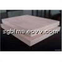 MR Glue Plywood for Packing from China