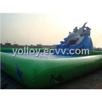 Giant Inflatable Swimming Pool with Shark Attack Slide
