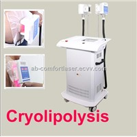 Multi-Function Master Cryolipoly+cavitation+rf Weight Loss Beauty Equipment for Spa Salon