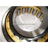 WZA Cylindrical Roller Bearing