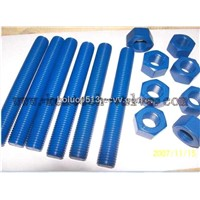 ASTM A193 thread bolt with heavy nuts
