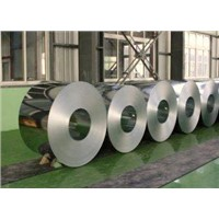 DX51 EN 10147 Hot Dipped Galvanized Steel Coil Roll for Industrial Freezers