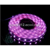 Good quality,5M Purple 5050 SMD 300p LED Strip light 12V,Silica gel tube waterproof