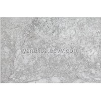 Polar Gray slab