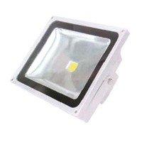TG009 LED Flood Light