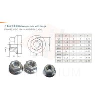 Titanium Flanged Nuts