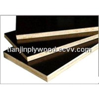 Film Faced Plywood --- Jackson