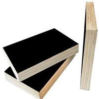 Building Film faced plywood