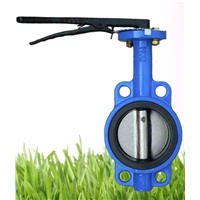 Cast Iron Lever Type Butterfly Valve