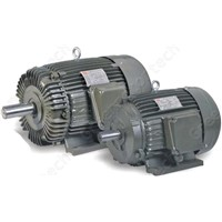 YT Series Three-Phase Asynchronous Motor