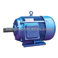Y three phase motor