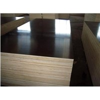 black film faced plywood / building template board for construction