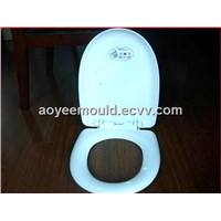 plastic toilet seat cover mould