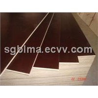 18mm Poplar Film Faced Plywood for Building