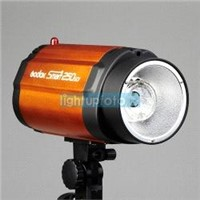 250/300ws Pro Photo Studio Mini Strobe Flash Monolight