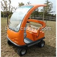2-seat Mini electric golf cart