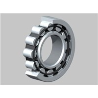 Betton Cylindrical Roller Bearings