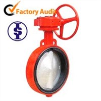 DIN cast iron wafer butterfly valve