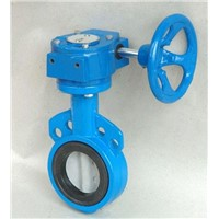 Gear box operated flanged butterfly valve