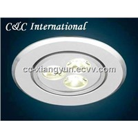 LED Indoor Light (D7003)
