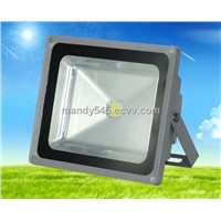 LED Tunnel Light-50W