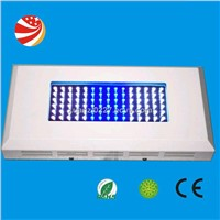 Led Fish Lamp Moonlight Light Coral Lamp Light led aquarium tank light 90(90*1w)