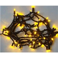 Led string light for holiday