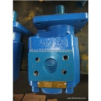 gear pump for CHANGLIN