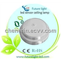 Indoor chandeliers led ceiling lamp with IR