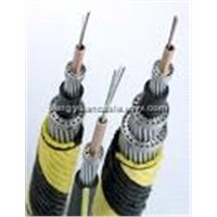 ABC aerial bundle cable; Service Drop Cable