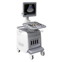 Color Doppler System (HY-i3)