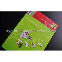 Color Printing Brochures