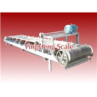 Electronic belt scale from YingHeng Weighing Scale China