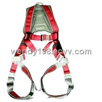 Luxury Full Body Harness EPI-11001