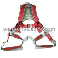 Luxury Full Body Harness EPI-11001B