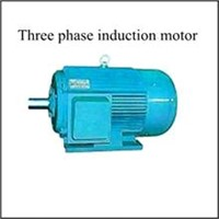Three Phase Induction Motor | China Exporter