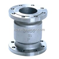 Vertical check valve flange end