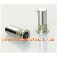 non standard stainless steel blind /closed end rivet nuts