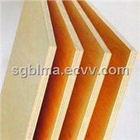 1220*2440*15mm Maple Plywood