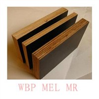 1220*2440*16mm E1 Glue Plywood
