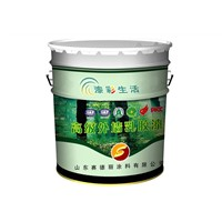 Exterior Wall Emulsion Paint