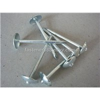 Good quality umbrella head roofing nails BWG9-BWG13 (Manufacturer)