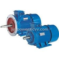 Gost standard Three-phase Induction Motor