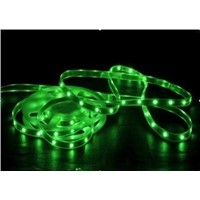 IP65 Waterproof 5050 Flexible LED Strip Light(30LEDs/m)