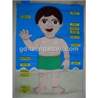 Spanish Human Body Part, Fabric Learning Chart