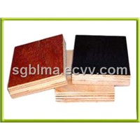 Waterproof 5mm Plywood with Hardwood Face/Back1220*2440